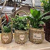 EXDJ Gardening grass weaving wicker rattan bamboo basket handmade flower pots,18x20cm