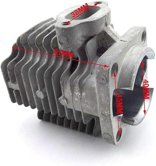 Sola 66010620/l/ápices ZimmermannZB 24/SB 10/unidades en rojo, 10/unidades