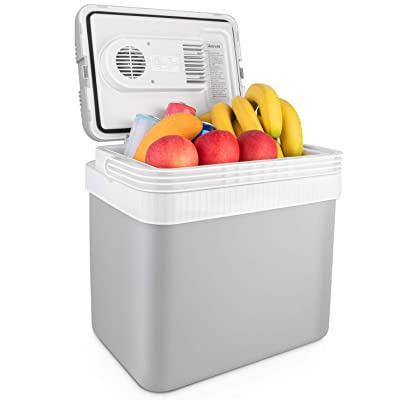 AstroAI 26 Quarts/ 24 Liter Portable Thermoelectric Electric Car Cooler for Beverage, Beer, Wine, Seafood, Fruits, Home and Travel with 2 Ice Packs (Gray): Automotive