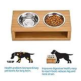 Elevated Dog and Cat Bowls, Raised Cat Dog Bowl