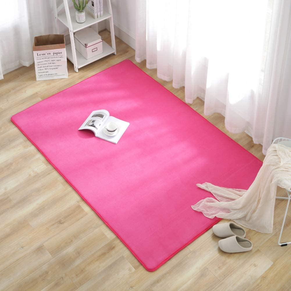 qwqqaq Soft Velvet Area Rug,Solid Color Shag Rug Shaggy Breathable Fluffy Carpets Non Slip Floor Rug Door Mat for Home Bedroom-f 100x160cm(39x63inch)