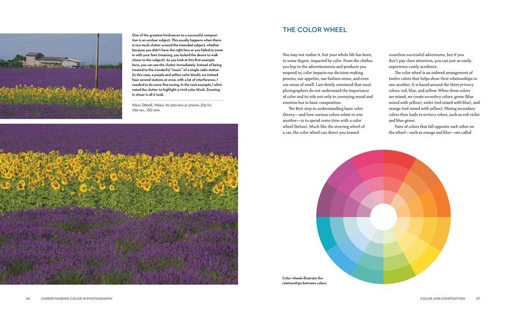 Understanding Color In Photography Using Composition And Exposure To Create Vivid Photos Bryan Peterson Susana Heide Schellenberg 9780770433116