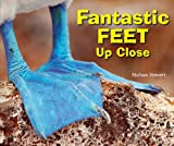 Fantastic Feet up Close, Melissa Stewart, 1464400849