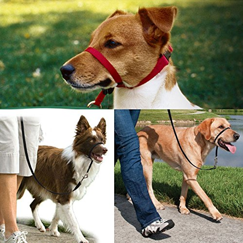 IdealPlast Black Pet Dog Head Collar Halter Leader No Pull Straps for Training Dogs 3 Sizes (Medium 25-60 lbs) ()