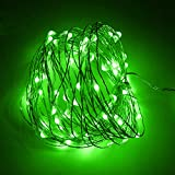 HIOTECH LED Lights with Remote Control Waterproof Christmas Decorative Lights 100 LEDs for Outdoor Decoration, Christmas, Party, Wedding, Ceremony, Celebration Decoration 33ft UL Listed (Green)