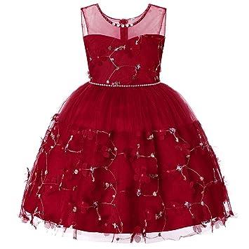 WJX Vestido de niña, niños Prom Ball Vestido, Falda Bordada sin ...