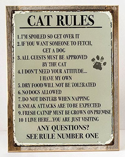 Humorous Wall Art (Framed Cat Rules Metal Sign, Humorous Casual Den, Bar, Gameroom, Crazy Cat Lady Décor)