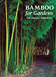 Bamboo for Gardens