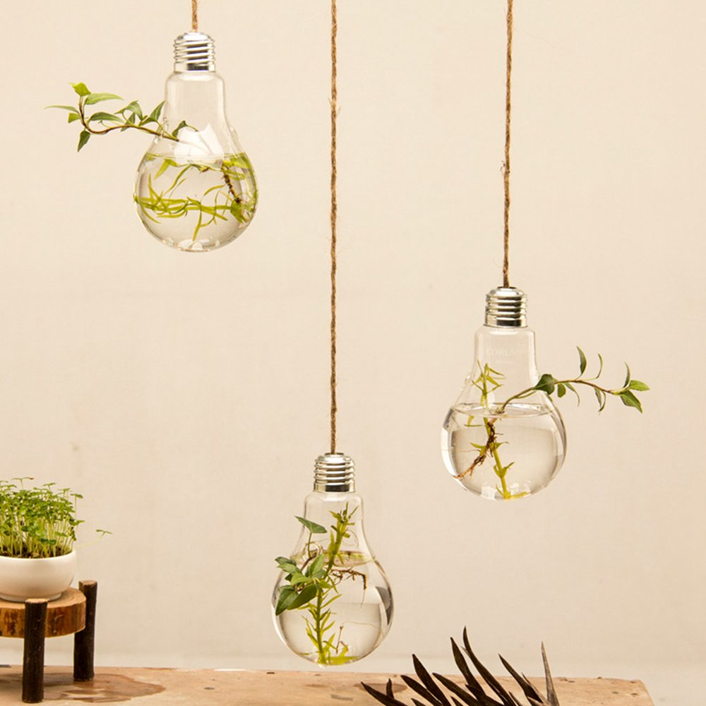 Mkono 3 Pack Hanging Terrarium Flower Plant Glass Vase Light Bulb Shape Home Weeding Decor by Mkono