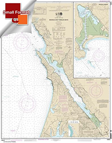 (Paradise Cay Publications NOAA Chart 18643: Bodega and Tomales Bays; Bodega Harbor 21.00 x 26.63 (Small Format Waterproof))