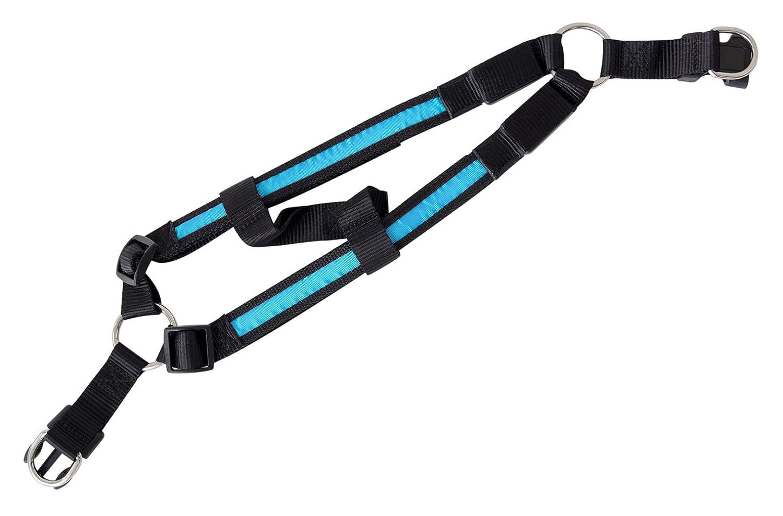 Arnés para los perros LED iluminado Collar arnés ligero arnés en ...