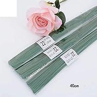 Rmeet Alambre de Tallo,Floral Wire 100 Pack Verde