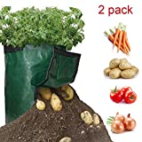 TAKOYI Garden Potato Grow Bag,10 Gallon 2-Pack Vegetables Fruit Planter Bags with Flap and Handles for Planting Potato, Tomato, Carrot, Onion & Flower (Dark Green)