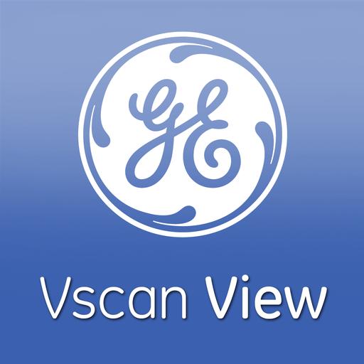 (GE Healthcare Vscan View)