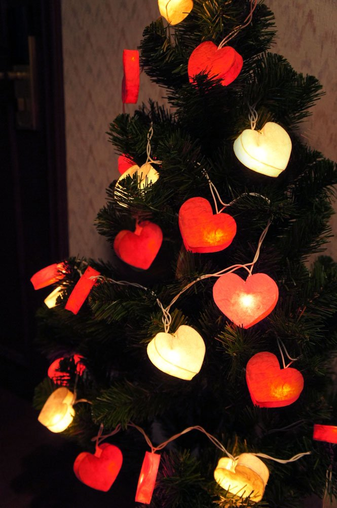 Valentines Day String Lights Valentine S Day Wikii