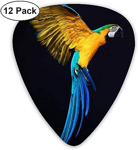 Parrot Wing 12 Pack Púas de guitarra, guitarras eléctricas y acústicas: Amazon.es: Instrumentos musicales