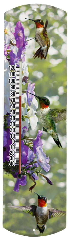 Heritage America by MORCO 375HUM Hummingbird Outdoor or Indoor Thermometer, 20-Inch