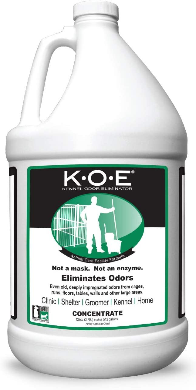 k-o-e de la Perrera Suave Jengibre Eliminator de Olor, para hormigón: Amazon.es: Productos para mascotas
