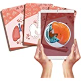 AR+ Body Planet: Body Cards, Cartas con Realidad Aumentada