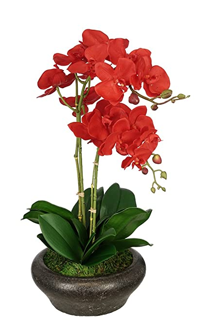 Amazon house of silk flowers artificial double stem orchid in house of silk flowers artificial double stem orchid in stone bowl red mightylinksfo