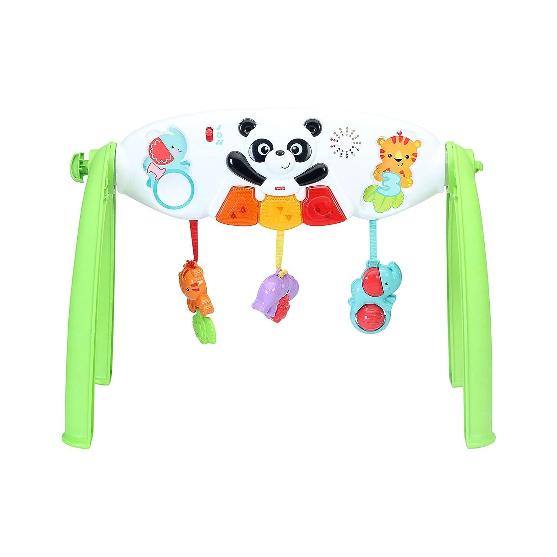 Mattel Fisher Price Baby Y6588 Gim With Panda Amazoncouk Toys