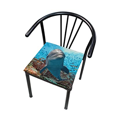 Bardic FICOO Home Patio Chair Cushion Sea Dolphin Underwater Square Cushion Non-Slip Memory Foam Outdoor Seat Cushion, 16x16 Inch: Home & Kitchen