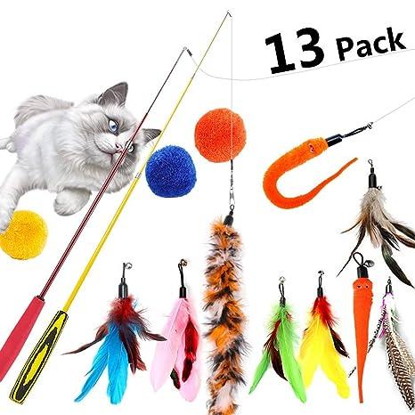 Amazon.com: RaMopet - Juguetes para gatos, 13 unidades ...