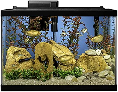 Tetra Complete 20-Gallon Fish Tank