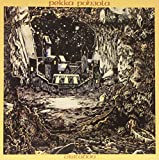 Visitation (Clear Vinyl/Gatefold)