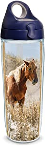 Tervis Coastal Wild Horses Insulated Tumbler with Wrap and Navy with Gray Lid, 24oz Water Bottle, Clear
