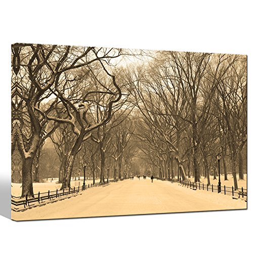 Sea Charm - Landscape Canvas Print New York Central Park Mall in Foggy Picture Printed on Canvas Art Painting for Living Room Decoration,Framed Artwork Ready to - Malls Newyork In