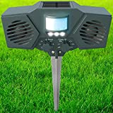 PestZilla Robust Solar Power Ultrasonic Pest Repeller with Flashing LED lights Outdoor Animal and Pest Repeller - Deters Racoons