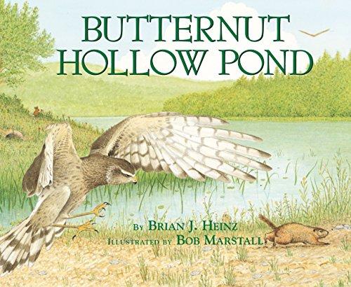 (Butternut Hollow Pond (Millbrook Picture Books))