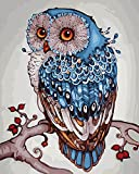 DoMyArt Acrylic Paint By Number Kit On Canvas For Adults Beginner - Lucky Owl 16X20 Inch