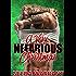 A Very Nefarious Christmas (Nefarious MC series)