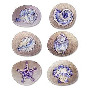 MORCART Magnets for Whiteboard Locker Stone Art Seashell for Fridge/Kitchen/Screen