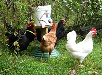 EZ Miser Nipple Chicken Waterer Kit by Avian Aqua Miser