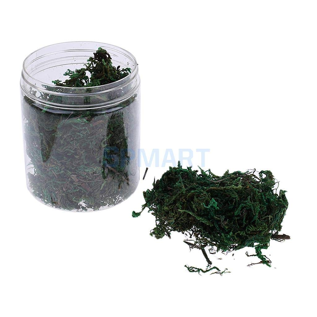 HOT- Model Building Kits - Dry Grass Model Moss for Layout Terrain Vegetation Diorama Building Toy - by Office Decoration - 1 PCs
