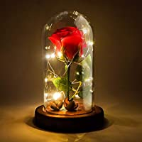 Jieway Beauty and The Beast Rose, Dream Flower Red Rose with USB 10 LED Lights on a Glass Dome Wooden Base for Valentine…