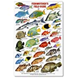 Fishwatchers Field Guide: Fishes of Tropical Atlantic & Caribbean ID Card
