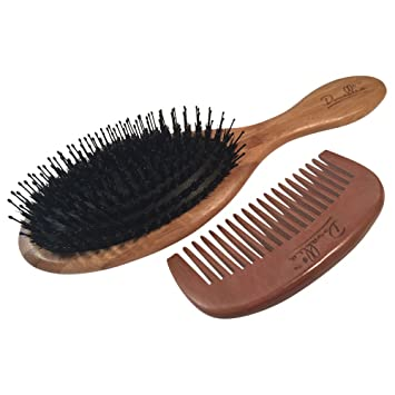 Best Boar Bristle Hair Brush Set For Women And Men Wood Comb And Hemp Travel Bag Perfect Brushes