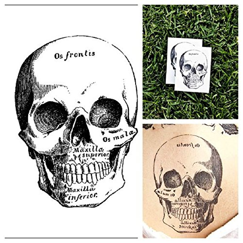 - Tattify Skull Temporary Tattoo - Dead Look (Set of 2) - Other Styles Available - Fashionable Temporary Tattoos - Long Lasting and Waterproof