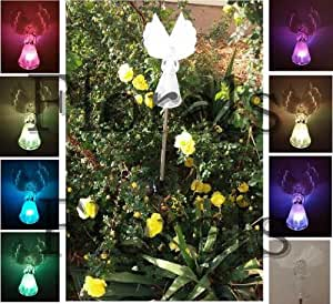 Amazon.com: Solar Fiber Optic Wings Angel , Garden Decor