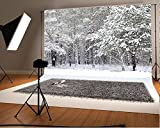 10x6.5ft Photo Scenic Background Holiday Backdrop Frozen Snow Trees Winter Wedding Photography No Wrinkles