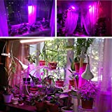 QvvCev LED Grow Light with Desk Clip 360 Degree