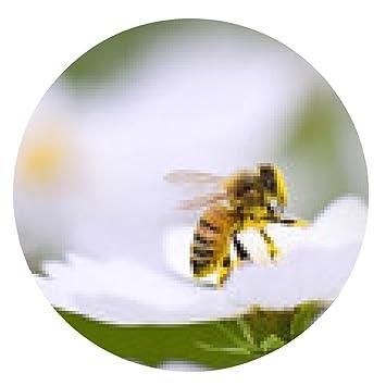 alfombrilla de ratón abeja de la miel - ronda - 20cm