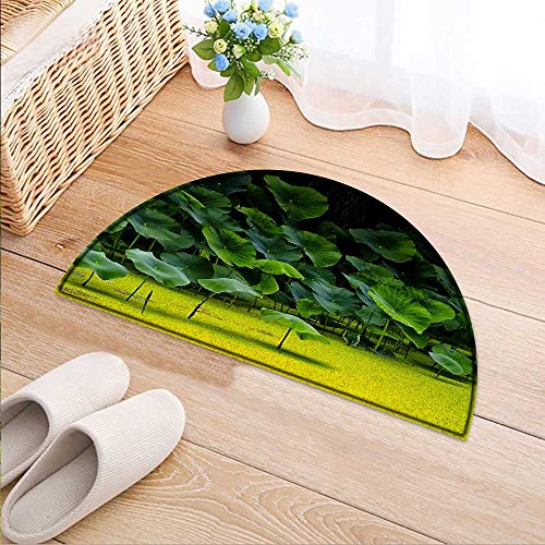 (Entrance Hall Carpet Pond Lotus Leaves in Summer Non Slip Rug W47 x H32 INCH)