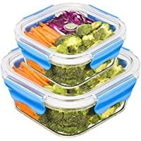 SELEWARE Glass Food Container with comparment