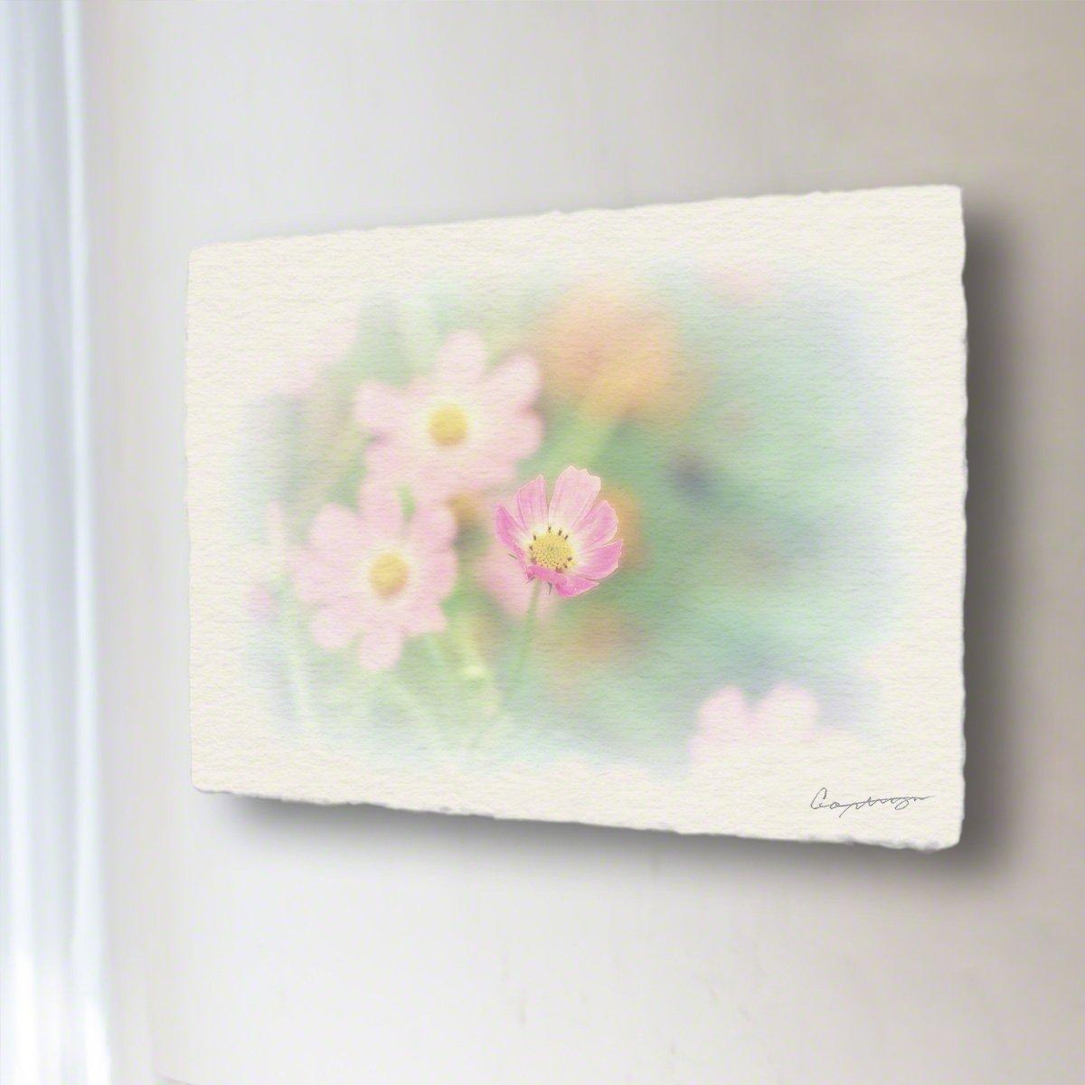 和紙 アートパネル 「開きかけたピンクの一輪のコスモス」 (18x13.5cm) 花 絵 絵画 壁掛け 壁飾り インテリア アート B07BHJ82P4 11.アートパネル(長辺18cm) 1980円|開きかけたピンクの一輪のコスモス 開きかけたピンクの一輪のコスモス 11.アートパネル(長辺18cm) 1980円