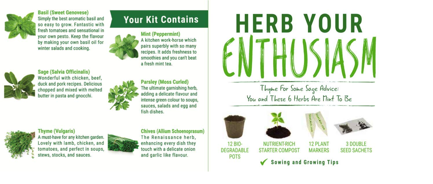 Sow Lush Set de Cultivo de Semillas «Herb Your Enthusiasm» 6 ...